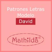 Modelo David